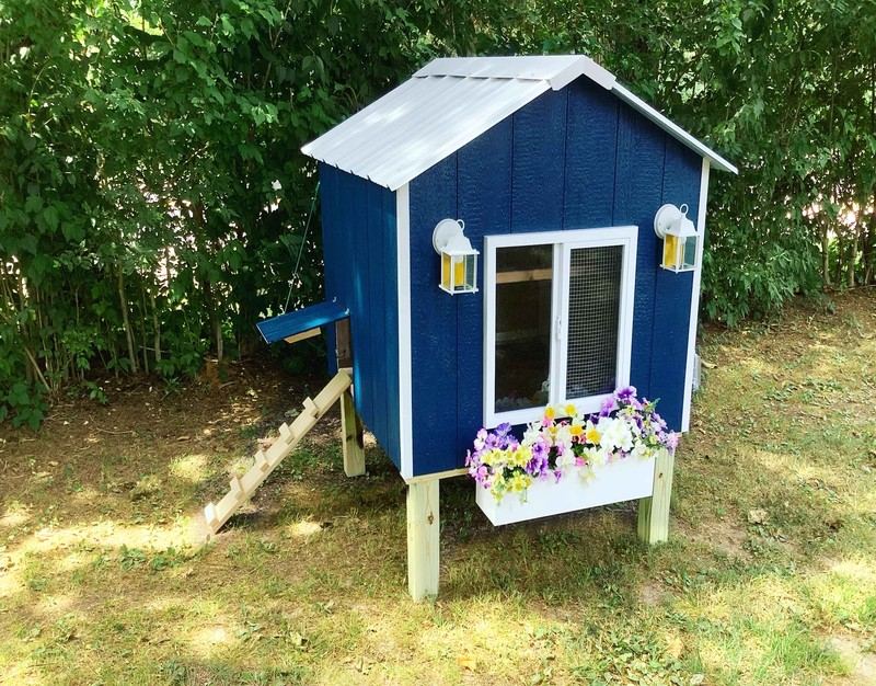 Hut - Chicken Package - Chicken Coop - Missouri - Illinois -Chickens  - Ducks