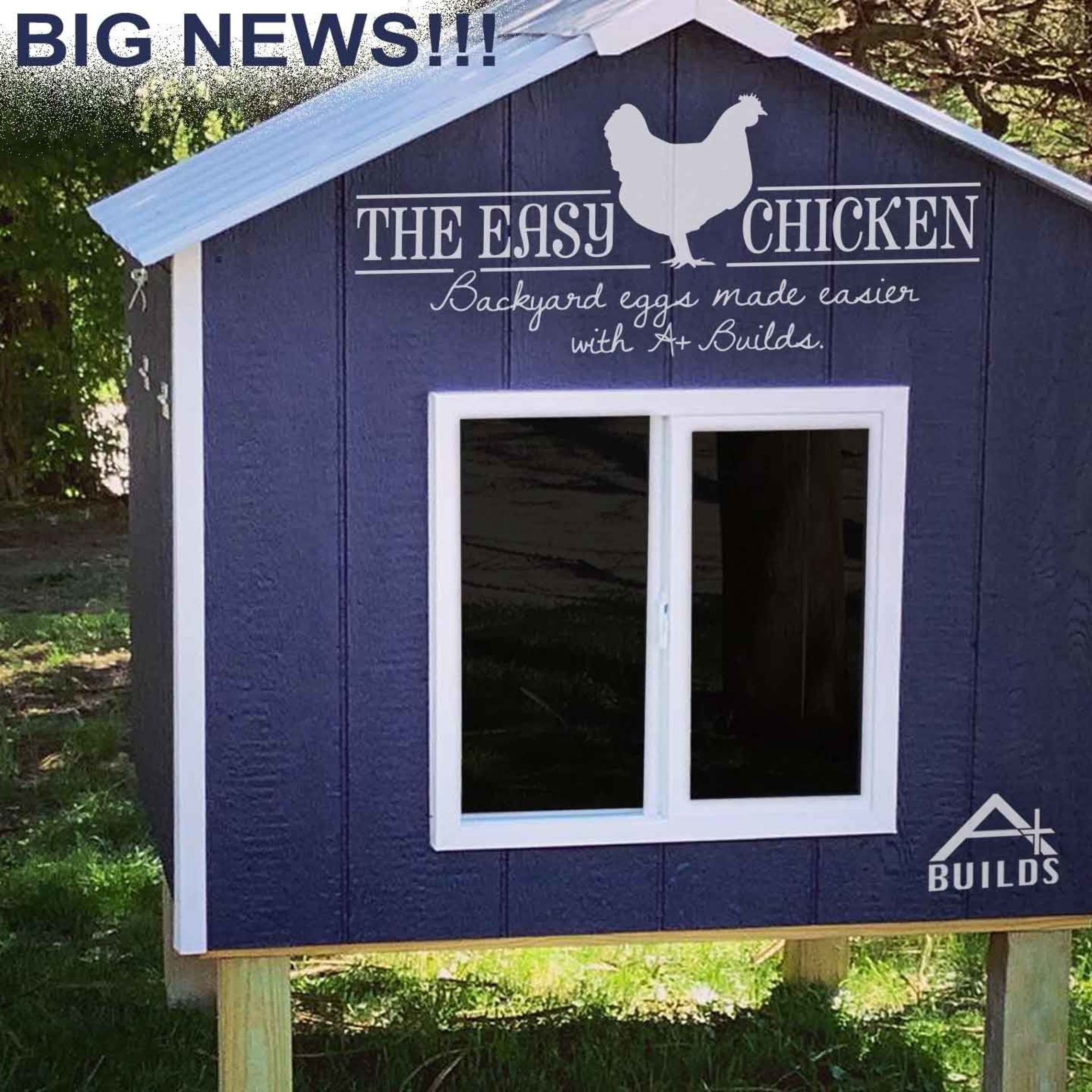 The Easy Chicken - Backyard Eggs Made Easier with A+ Builds