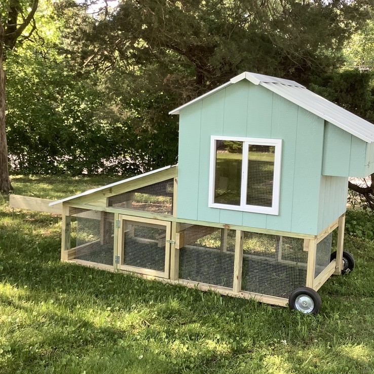 Chicken Coop - Chickens - Chick - Missouri - Illinois - Duck - Home
