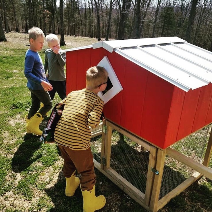 Coop de Villa - Chicken Coop - Chickens - Chick - Missouri - Illinois - Duck - Home