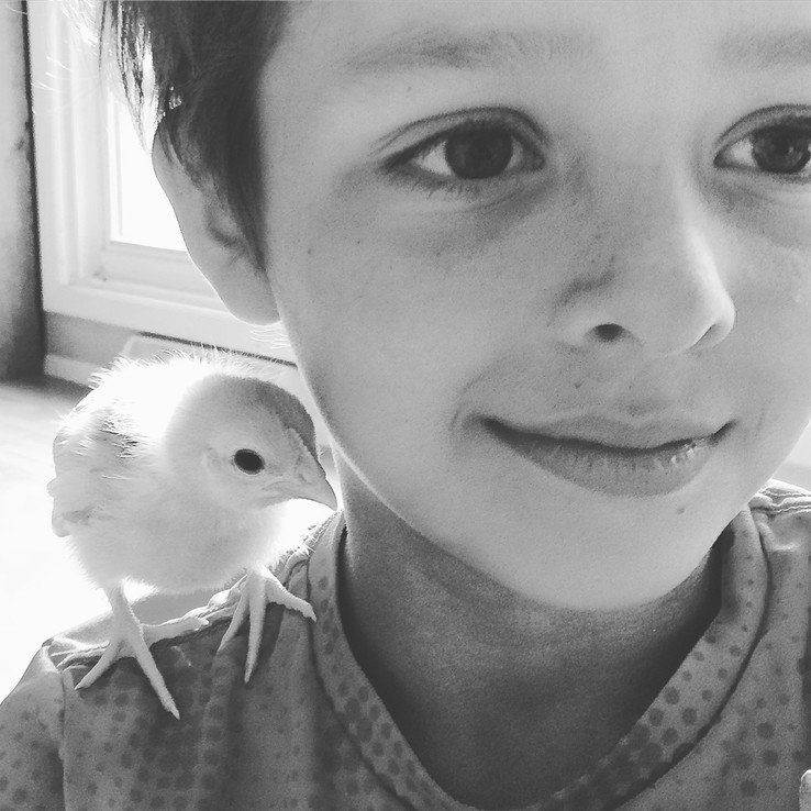 Boy with chick on his shoulder